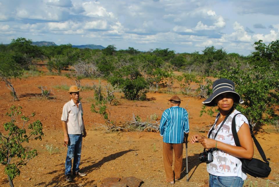 Dia Mundial do Combate à Seca e à Desertificação lembra luta contra aridez