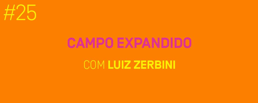 Site_MicrofoneAberto_LuizZerbini_25