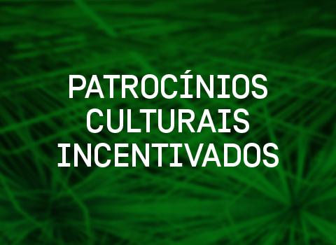 Miniatura_Timeline_EditalCultura-01